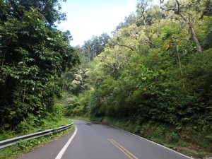 The Road to Hana surrounded by lush greenery