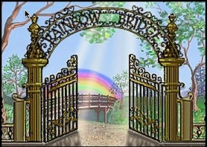 Rainbow Bridge Graphic